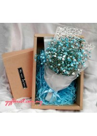 Dyeing  Baby Breath  in Box Set