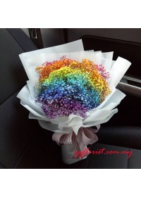 Dyeing Rainbow  Baby Breath
