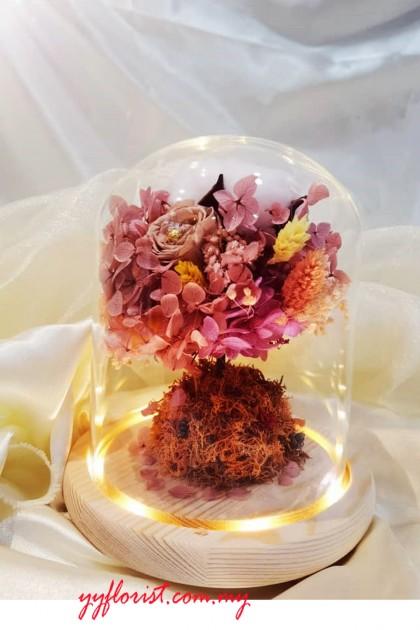 Fantasy  Preserved Roses Bell Jar