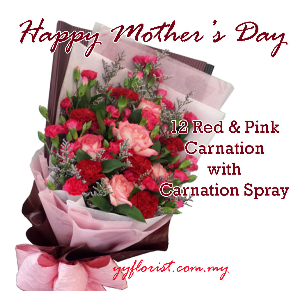 Mothers Day Carnation Flower Bouquet